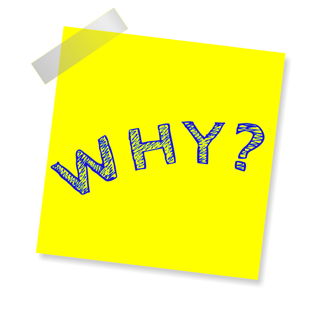 critical thinking starts with asking why