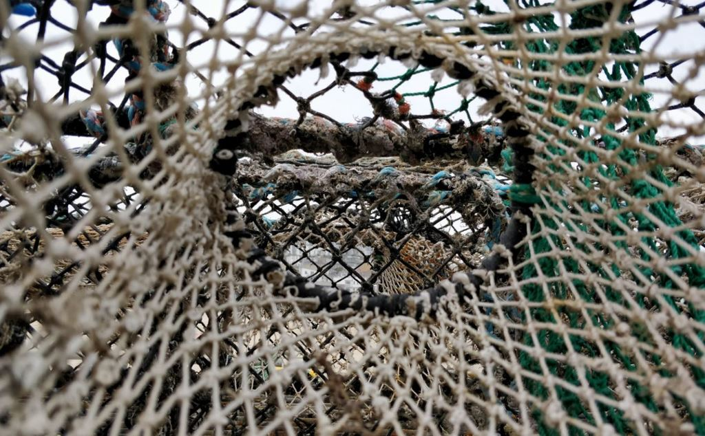 How to avoid the predictability trap lobster pots